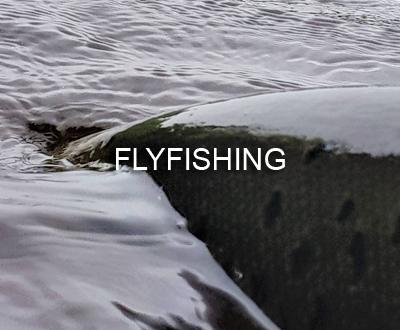 FlyFishing_Portfolio