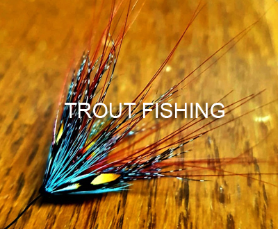 Trout-fishing_portfolio